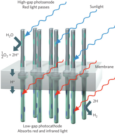 The 'Dream-device': Tandem device performing overall water splitting under sunlight